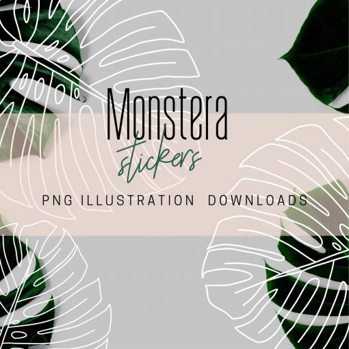 monstera-PNG-download